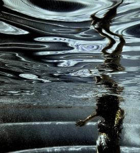 Johannesson_suo universo subacqueo 2_sm